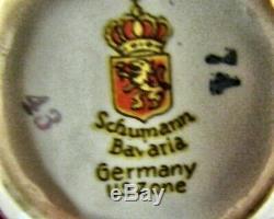23 Pc Schumann Bavaria EMPRESS DRESDEN FLOWERS Demitasse Cup & Saucer Set MINT